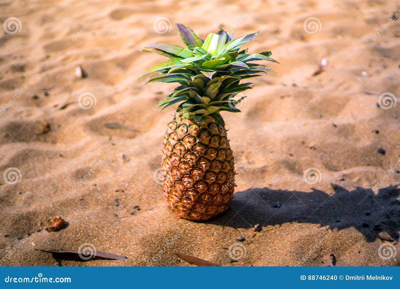Símbolo exótico de la fruta de la piña del verano que se coloca en arena de la playa