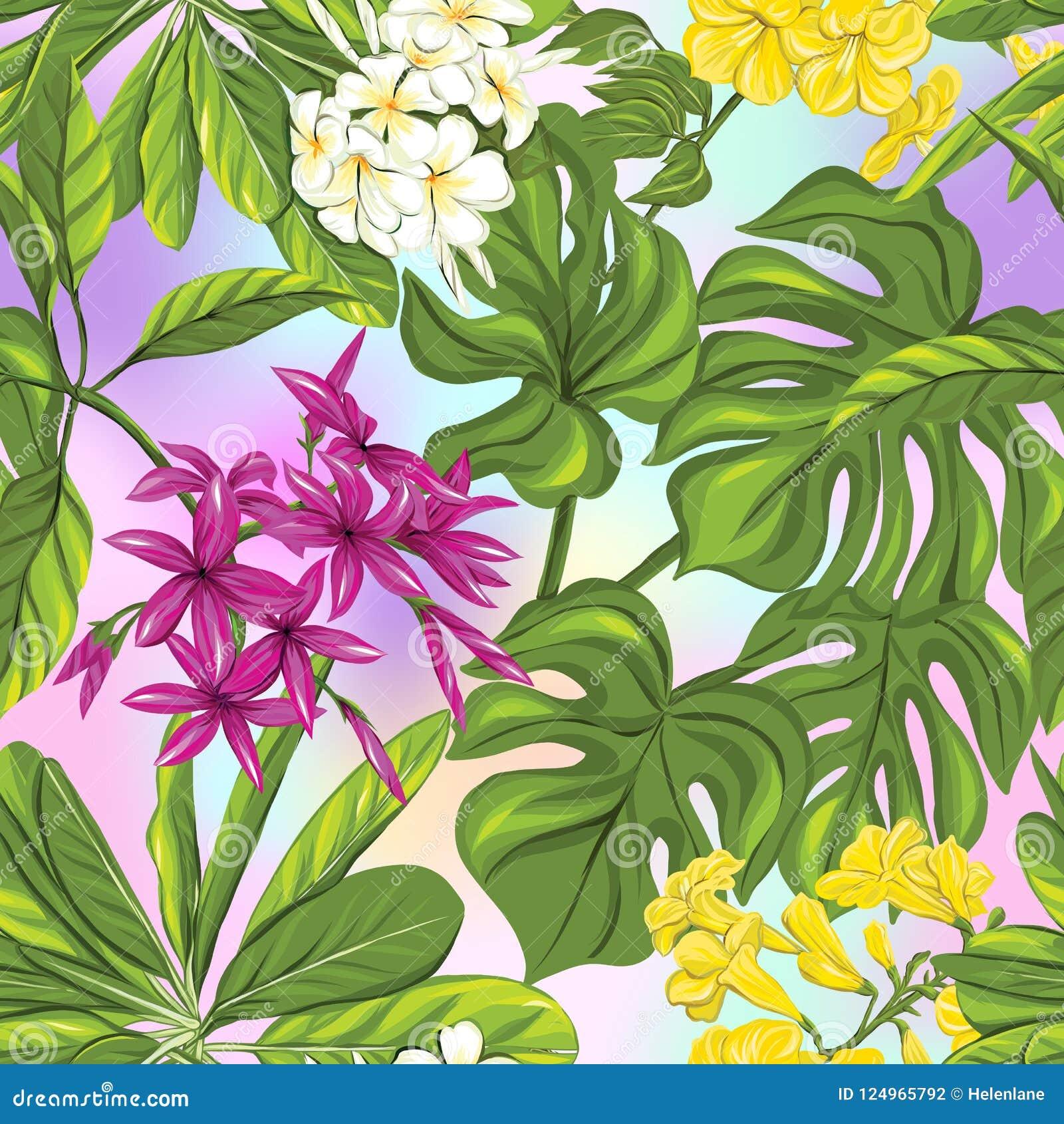 Sömlös modell, bakgrund med tropiska växter: monstera strelitzia, bougainvillea,