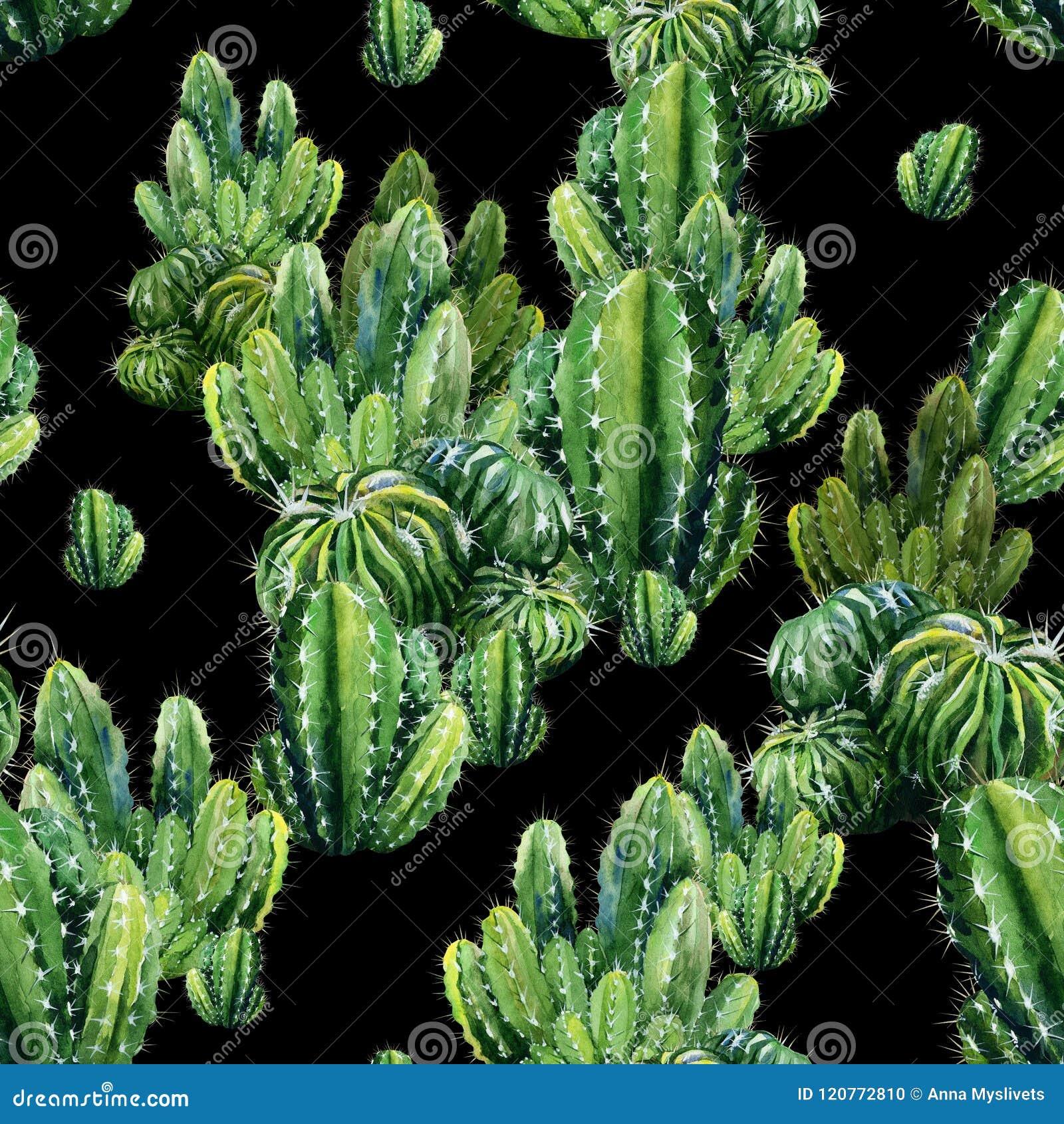 Sömlös modell med kaktusvattenfärgen