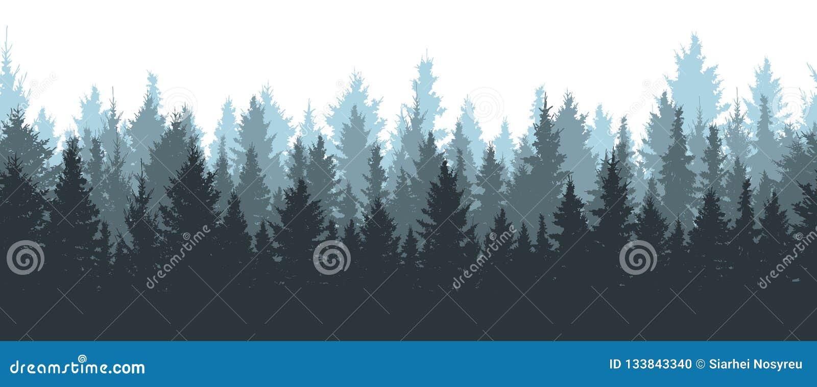 Sömlös vinterskog, kontur av granar
