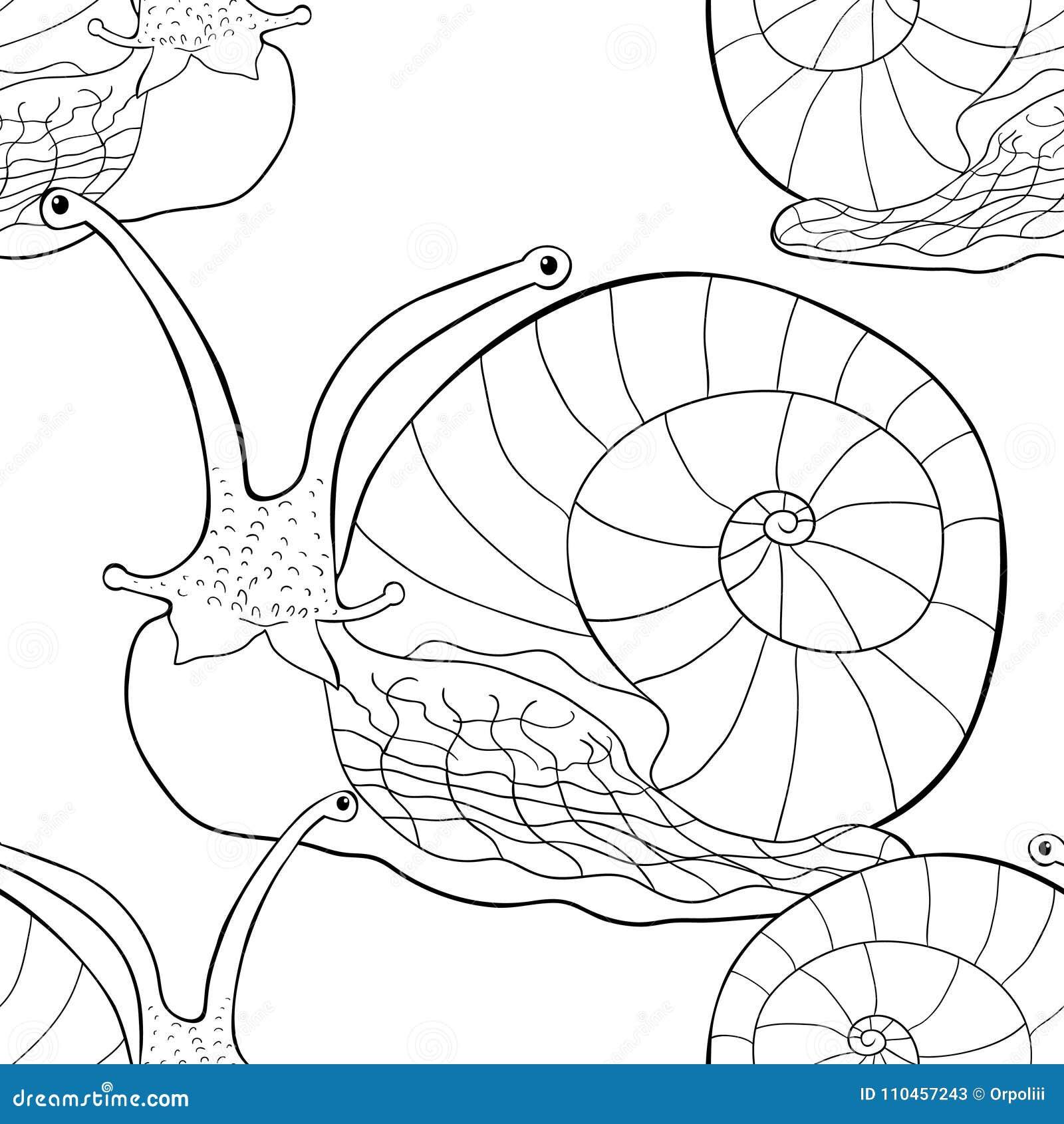 Sömlöst blötdjur för gastropod för modellkrypsnigel Vektorillustra