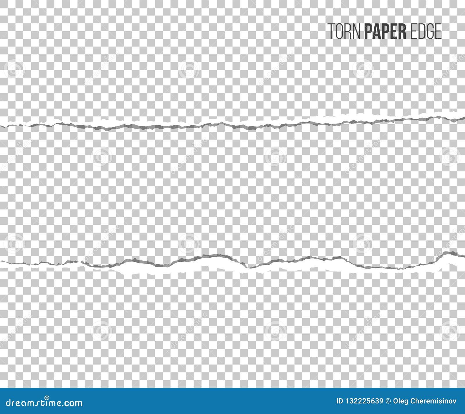 Sönderriven pappers- kant med skugga som isoleras på genomskinlig bakgrund den lätta designen redigerar elementet till vektorn