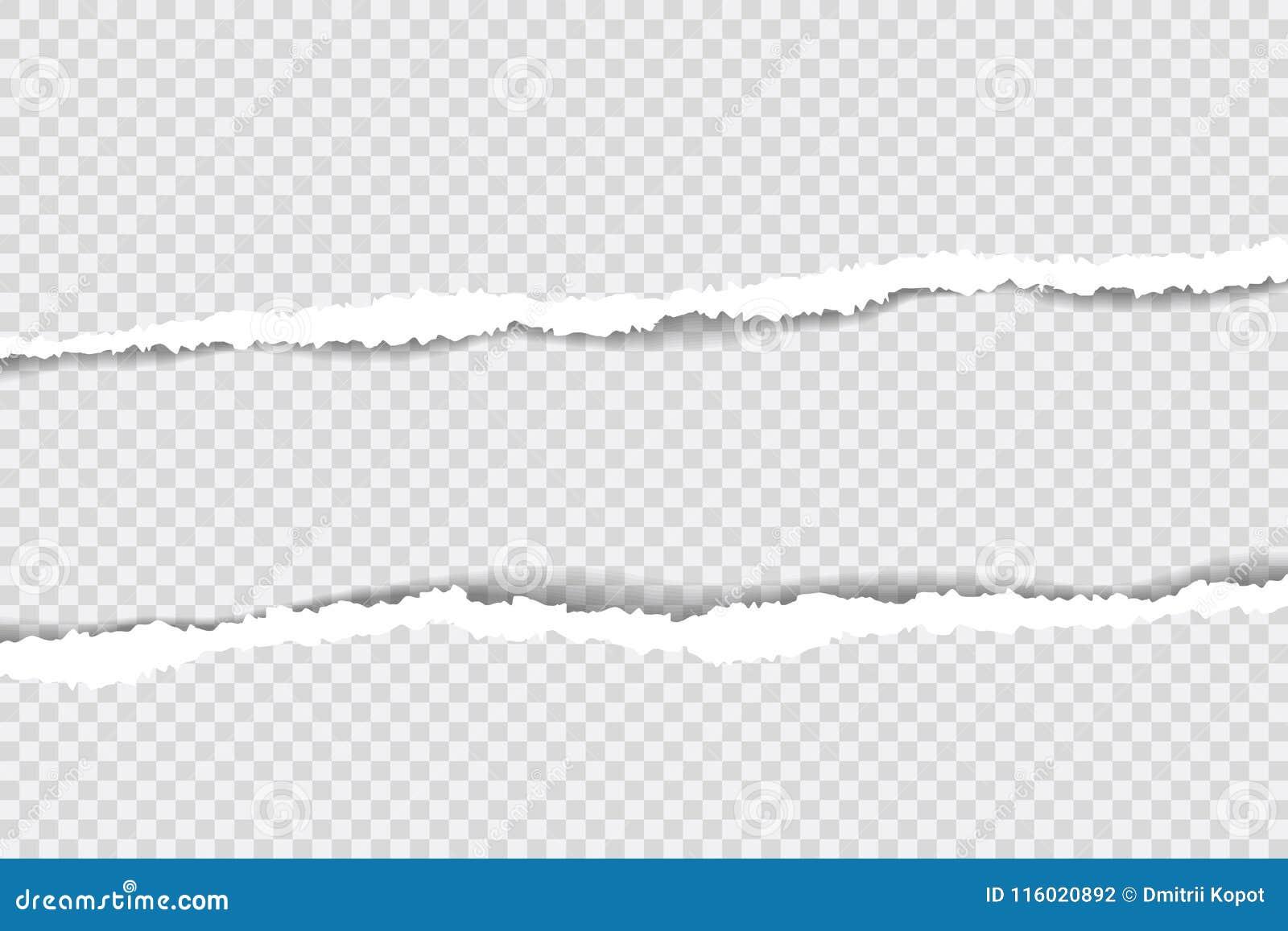 Sönderrivna pappers- kanter, sömlös horisontellt textur för bakgrund, vektor som isoleras i utrymme för annonsering, baner av web