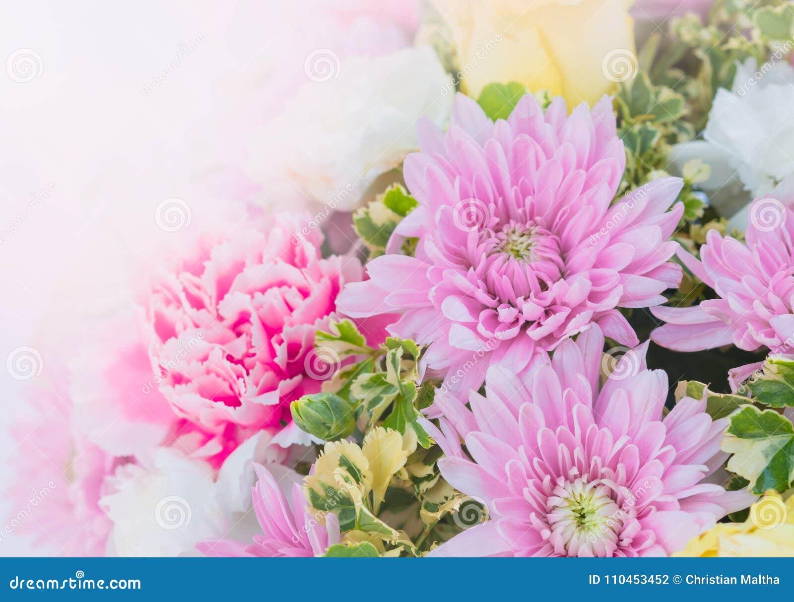 Söt färg av den härliga blomman för att gifta sig