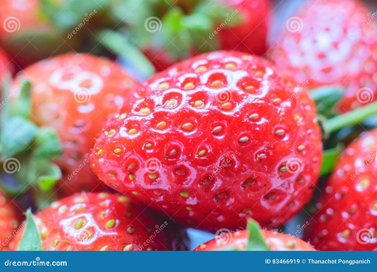 Söt jordgubbe ny jordgubbe Rött strewberry