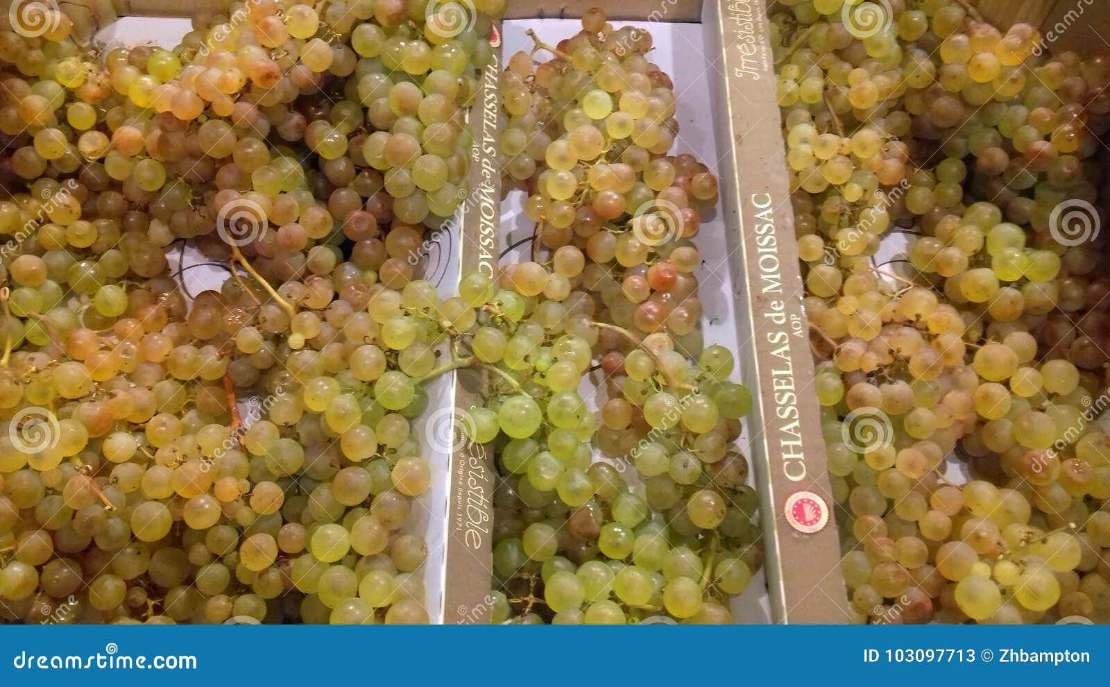 Söta druvor