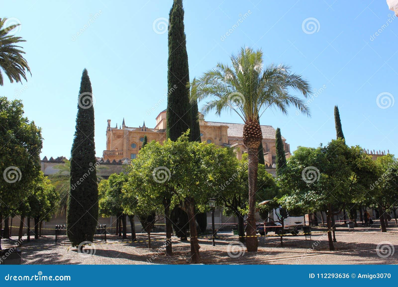 Sławny meczet w cordobie, Andalucia, Hiszpania Wielki meczetu lub Mezquita sławny wnętrze w cordobie, Hiszpania