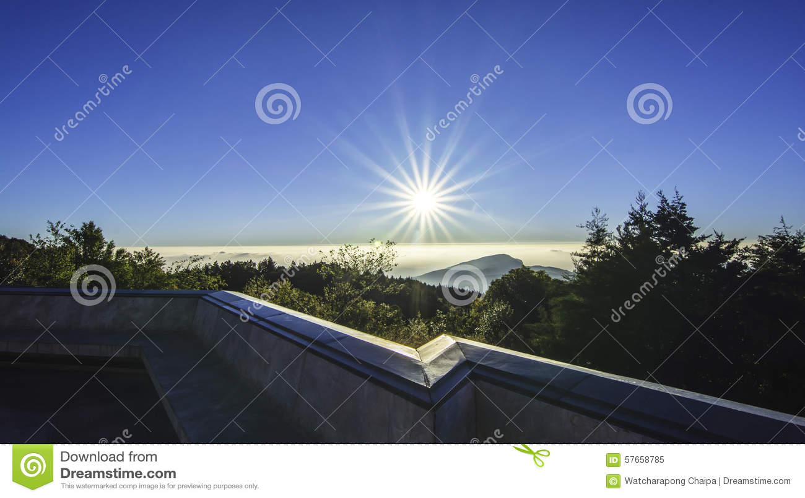 Słońce w ranku