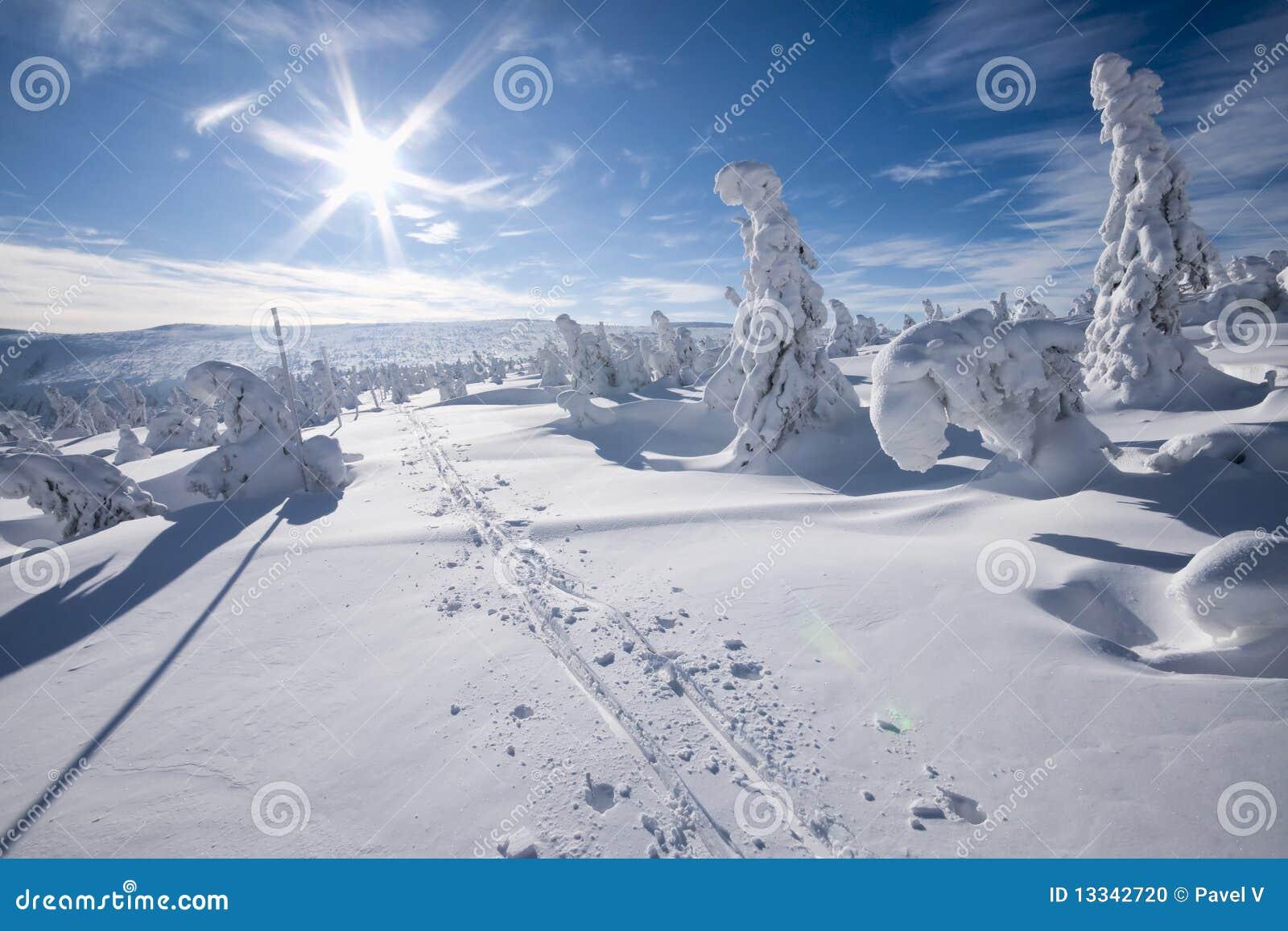 Słońce zima