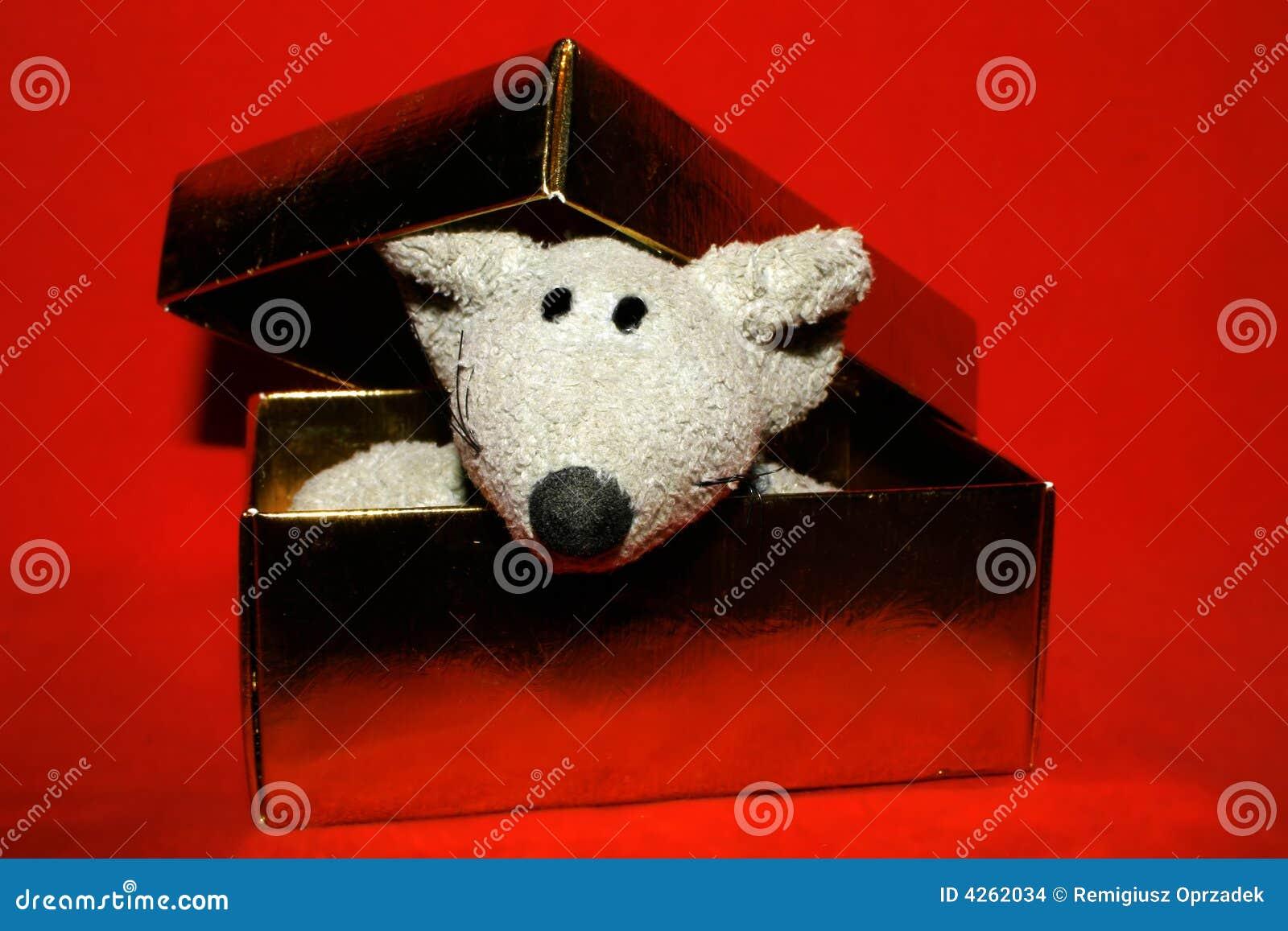 Słodka pudełkowata mysz złota