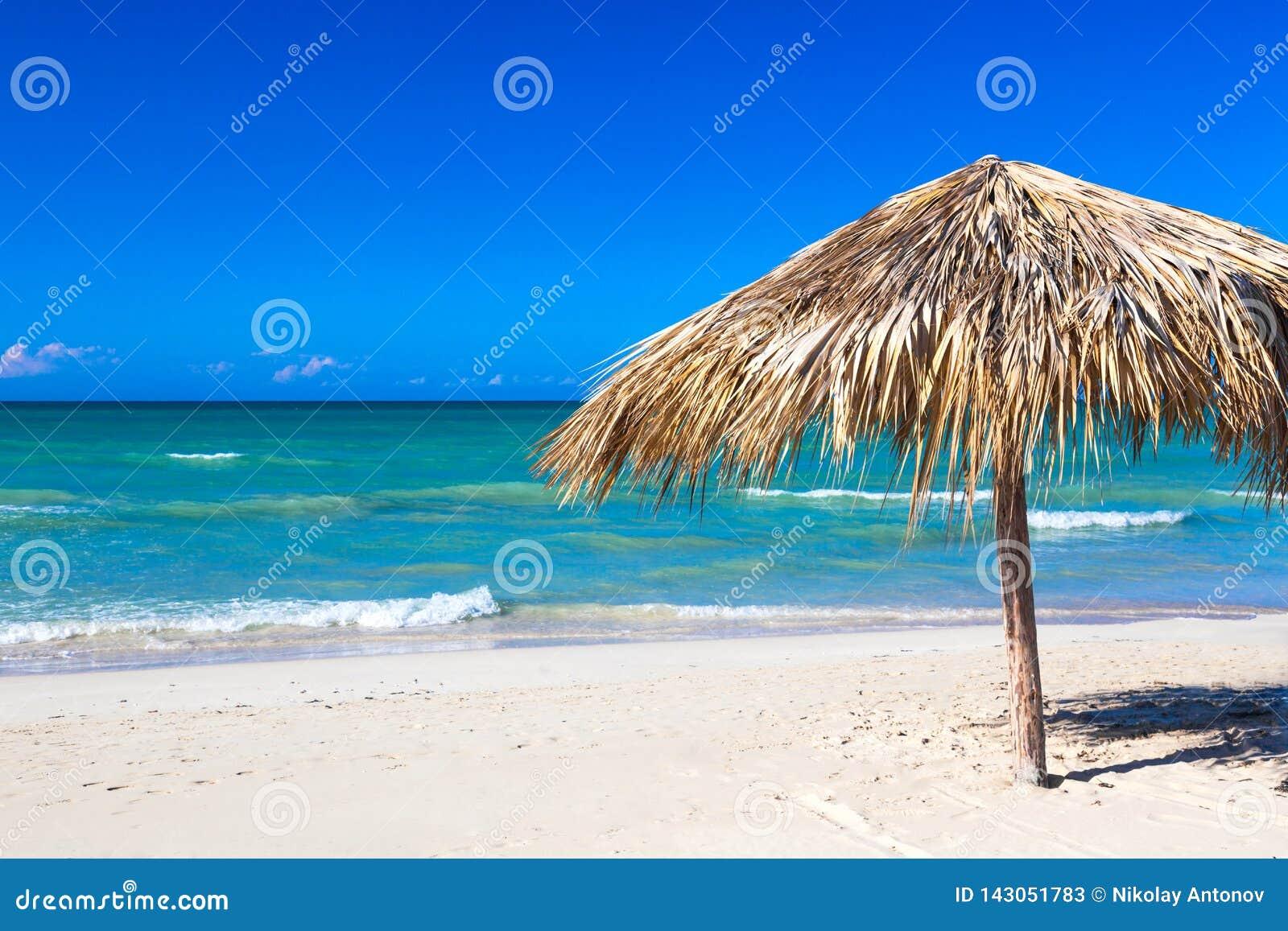 Słomiany parasol na pustej nadmorski plaży w Varadero, Kuba Relaks, wakacje idylliczny tło