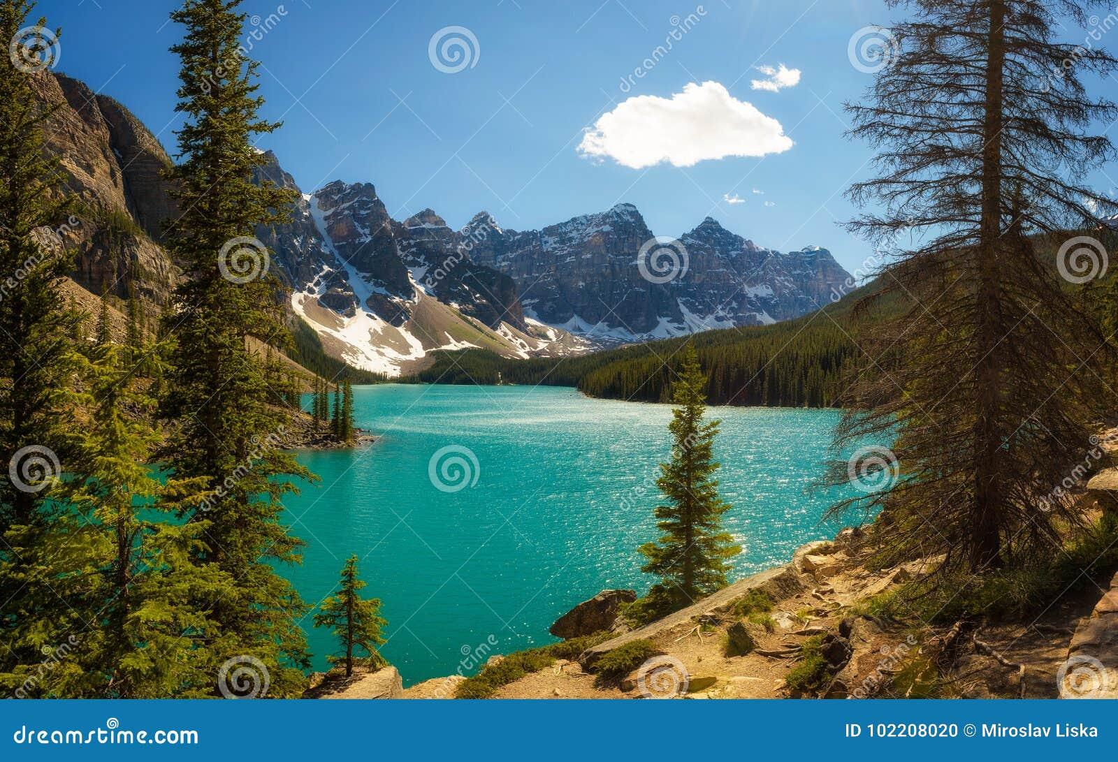 Słoneczny dzień przy Morena jeziorem w Banff parku narodowym, Alberta, Kanada
