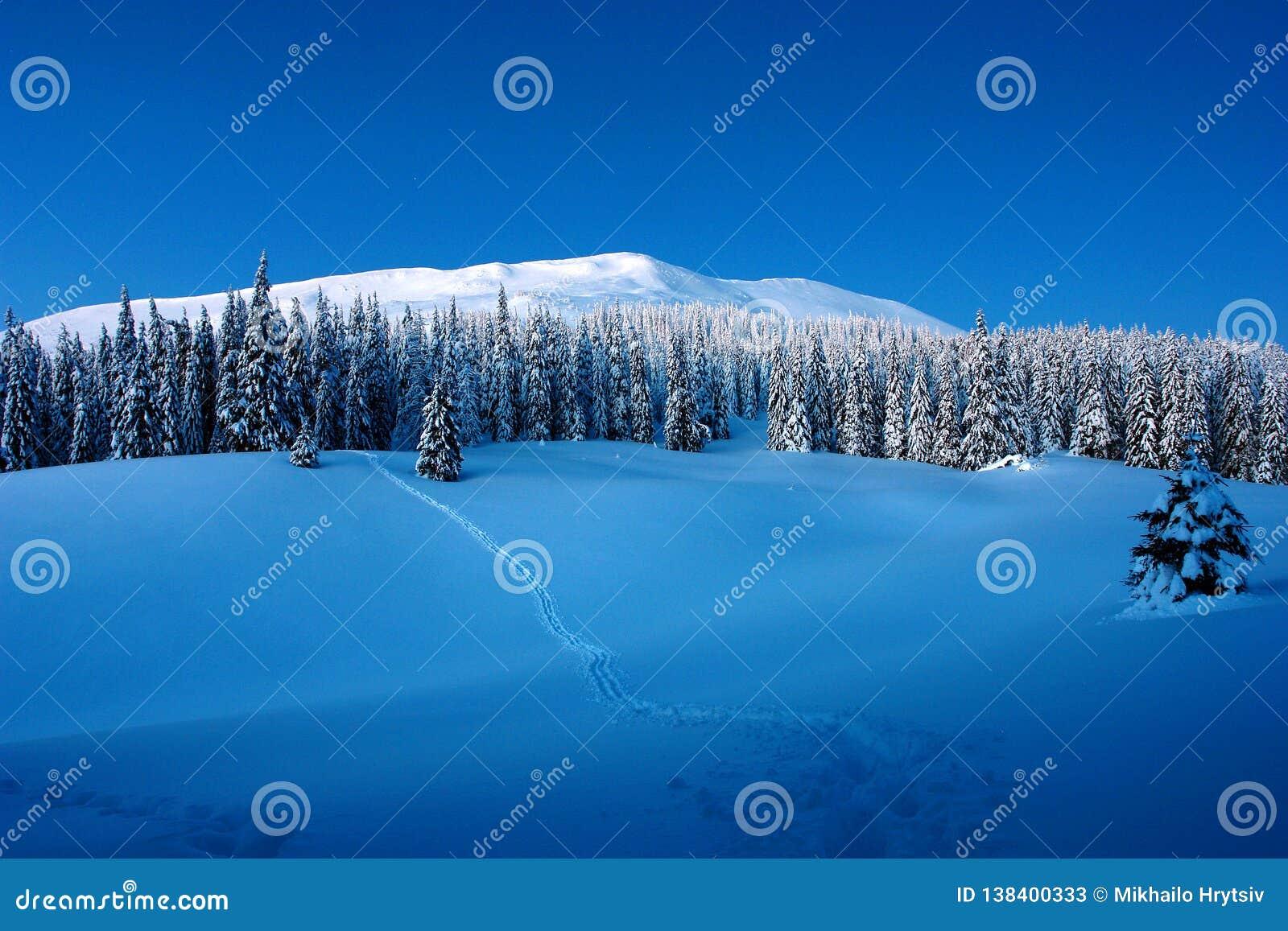 Słoneczny dzień w zim górach
