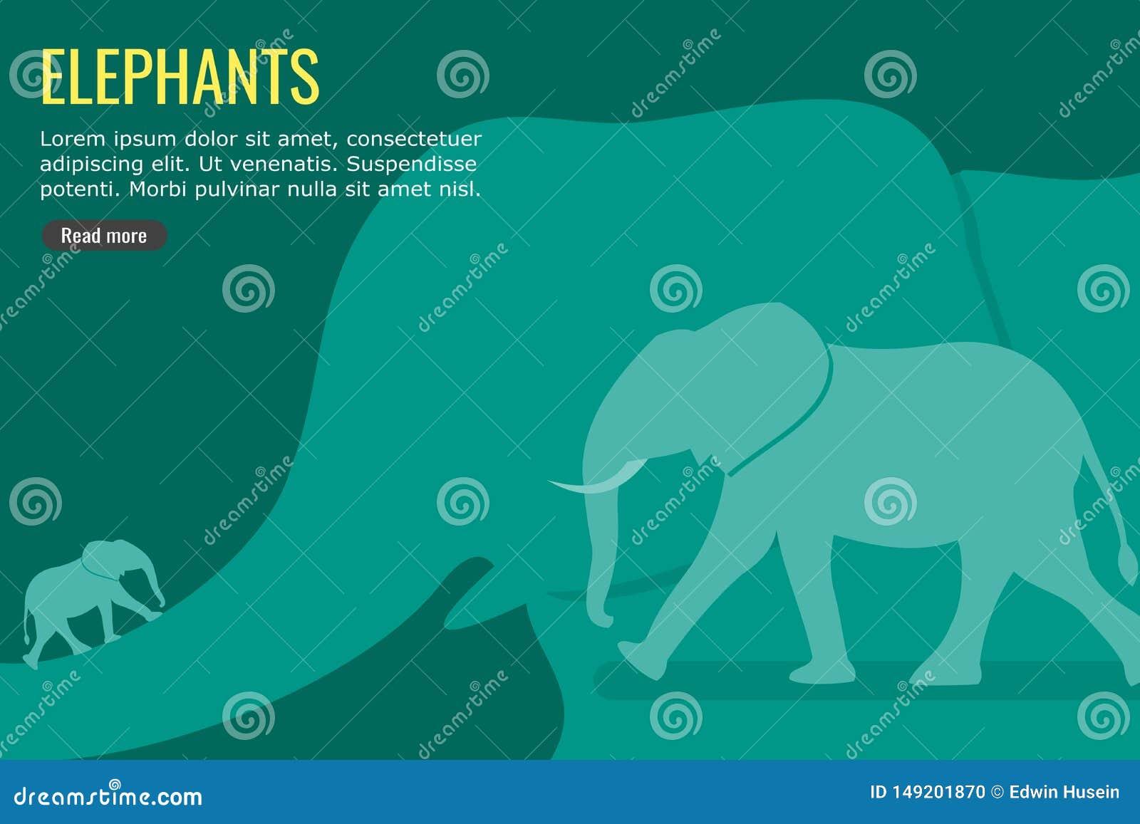 Słonia tła i wektoru grafiki projekt