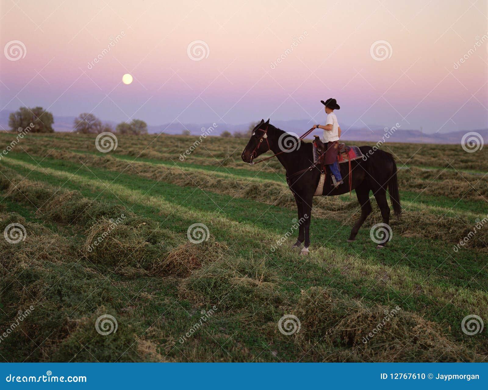 S-1385-Cowboy at sunset