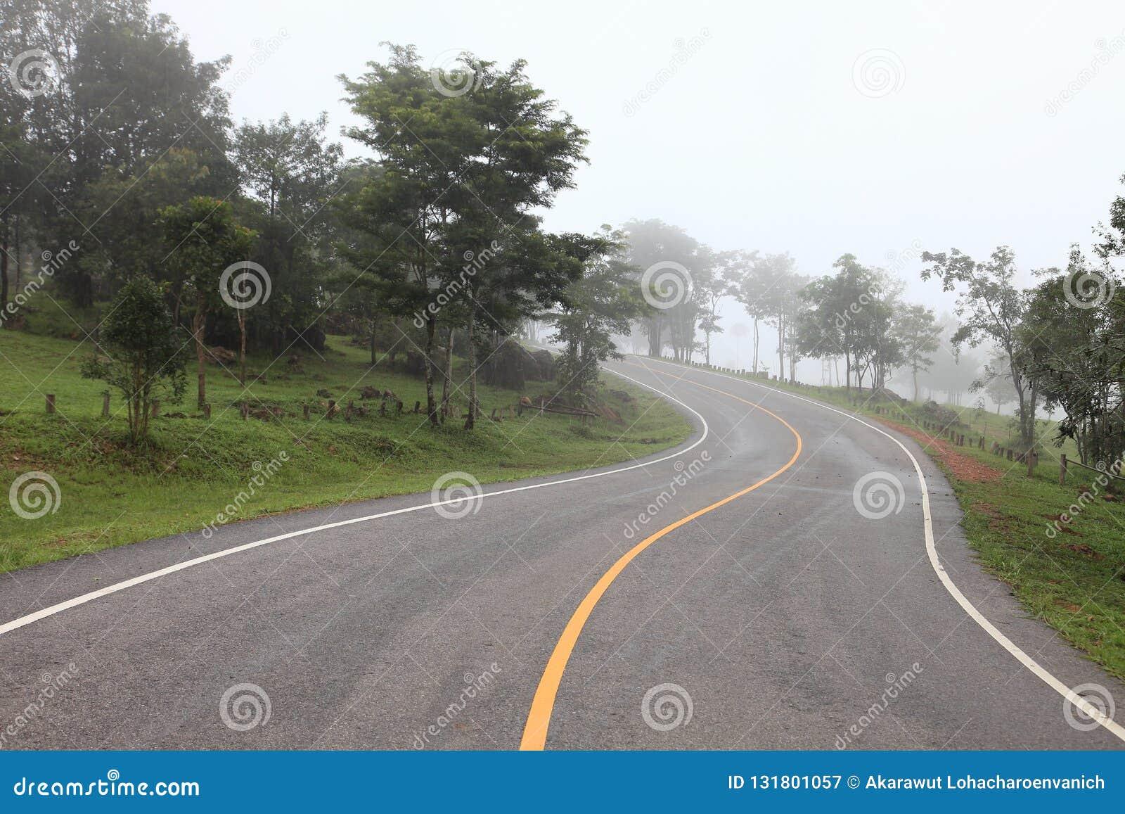 S buktade vägen som leder in i berget i den kalla dimmiga morgondagen