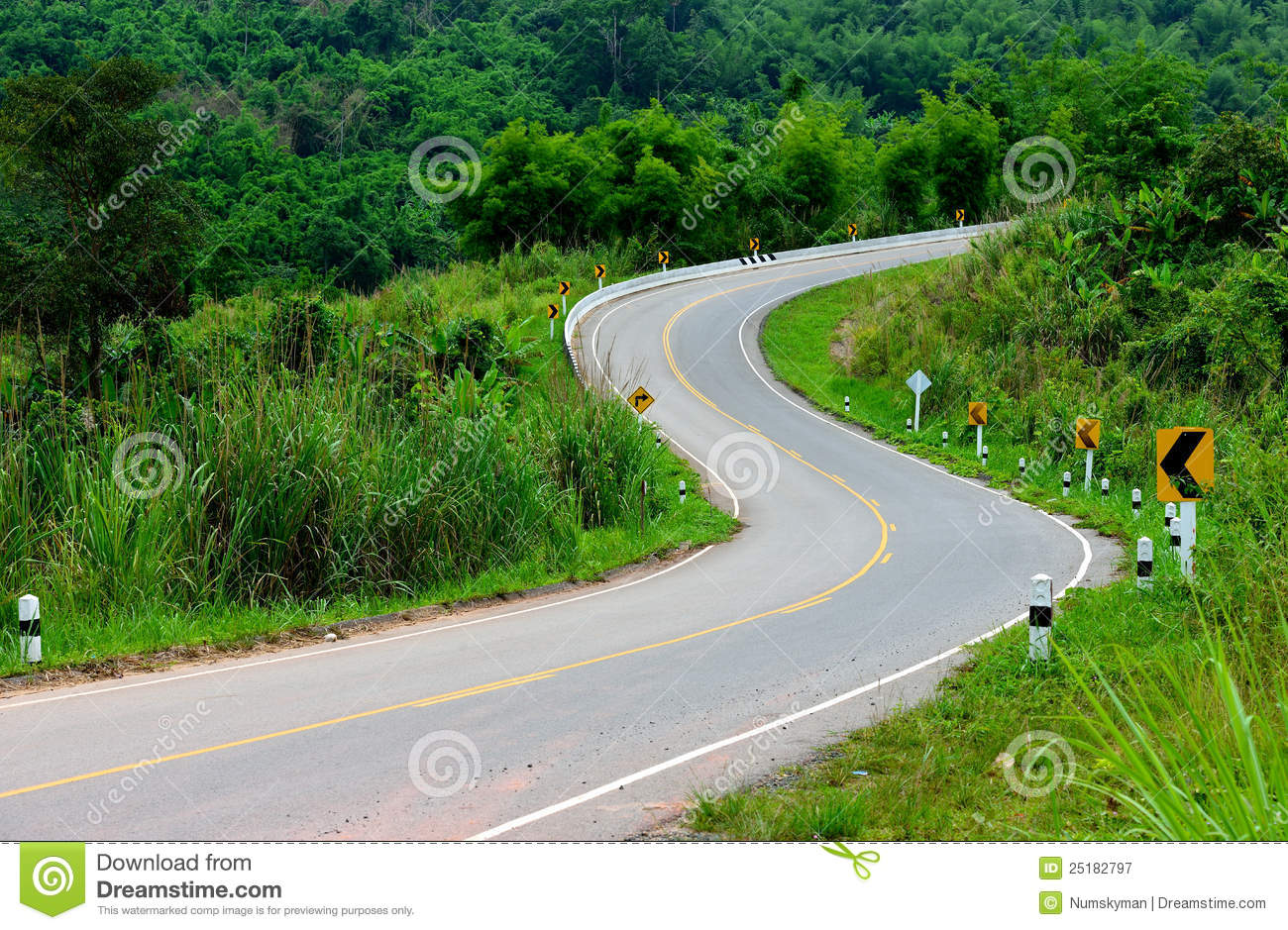 The S Curve Road Royalty Free Stock Photography - Image ...