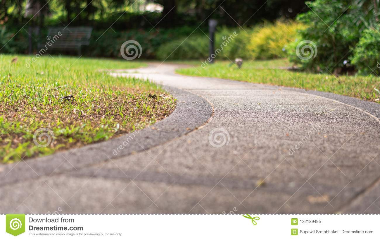 S curve walking pathway in the garden. Business and the path to success concept.