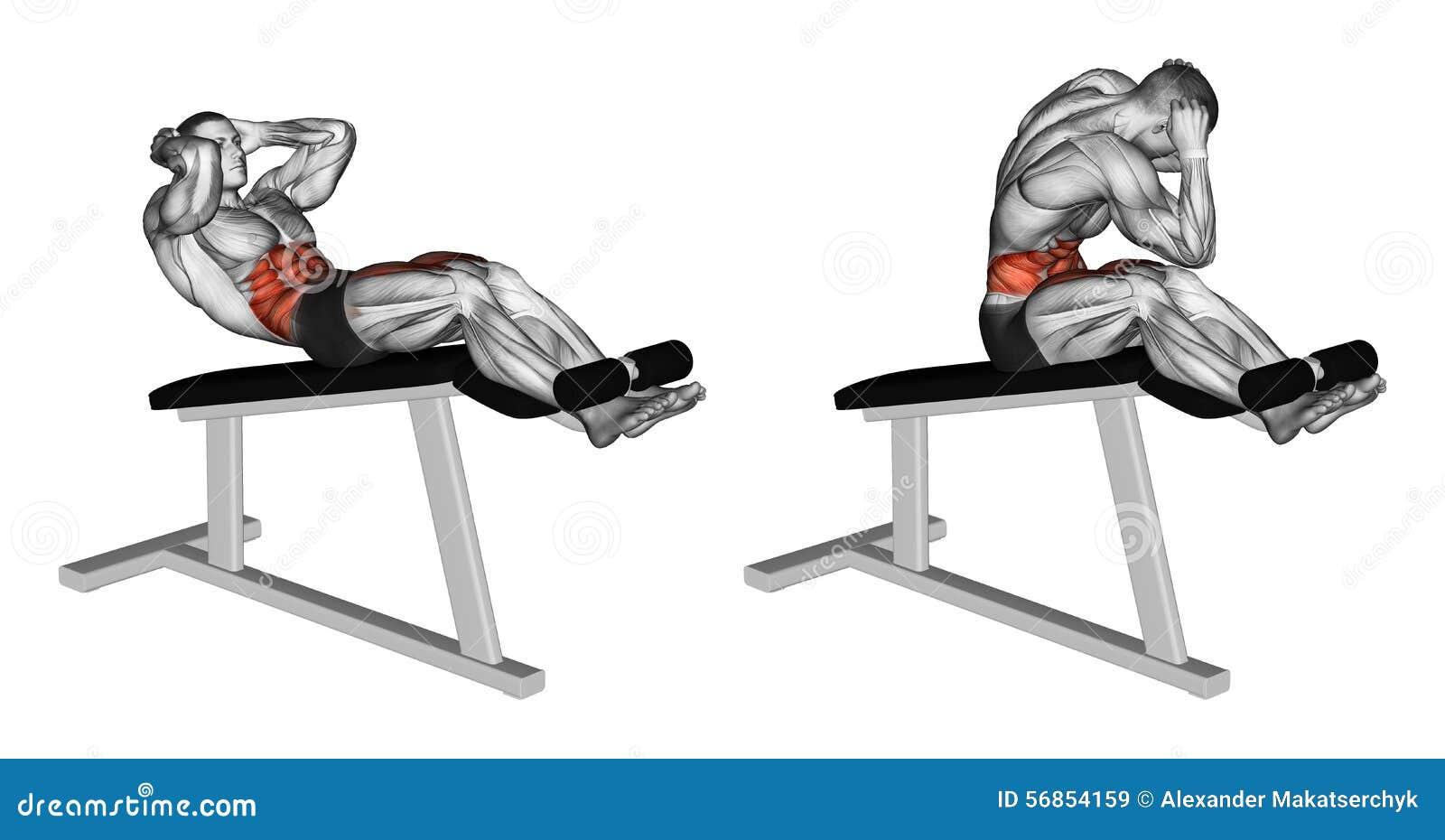 S Exercer Vrillage Pour Allumer La Chaise Romaine