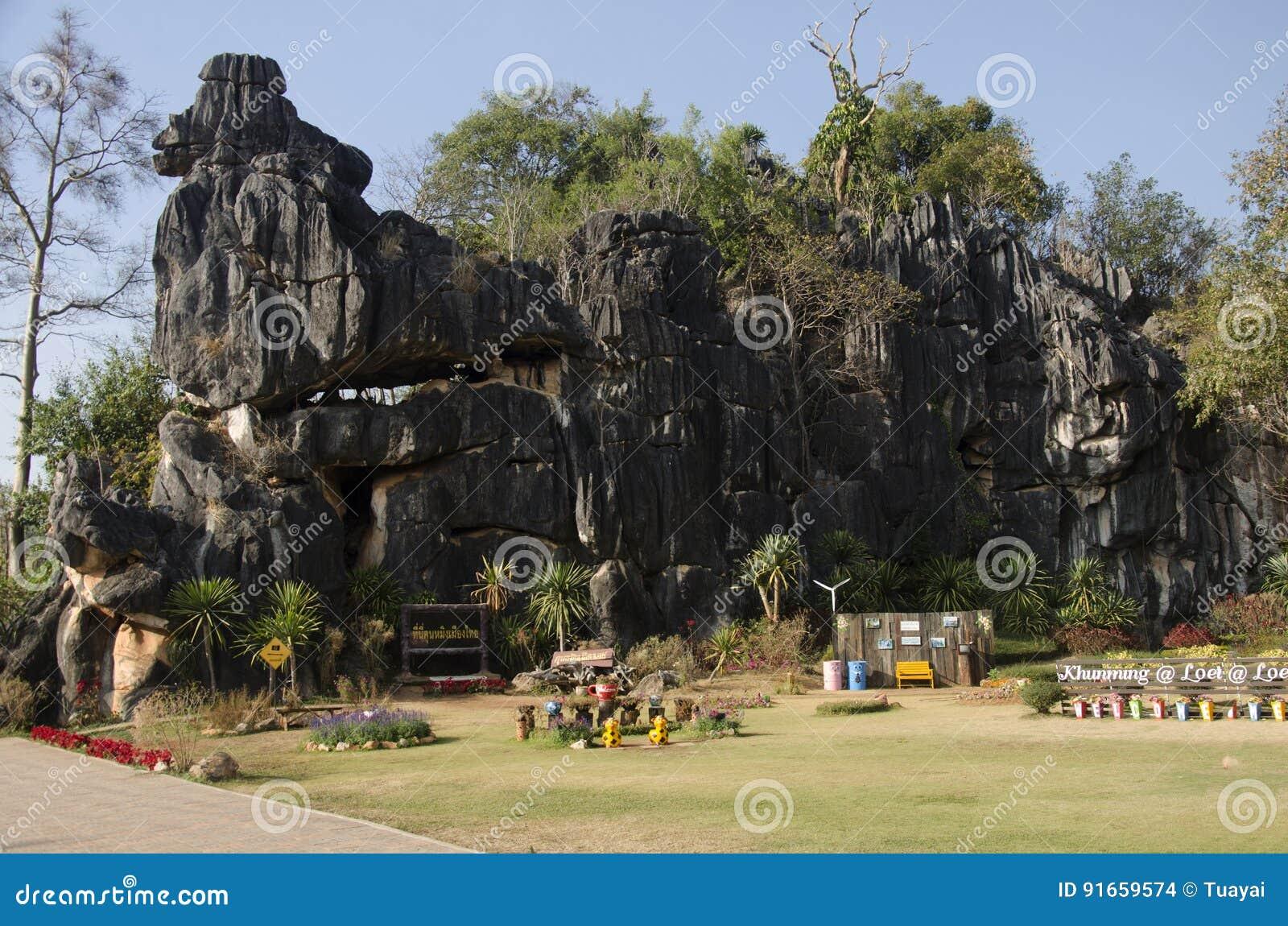 ` S Kunming de Suan Hin Pha Ngam o de Tailandia en el santuario de fauna de Phu Luang en Loei, Tailandia