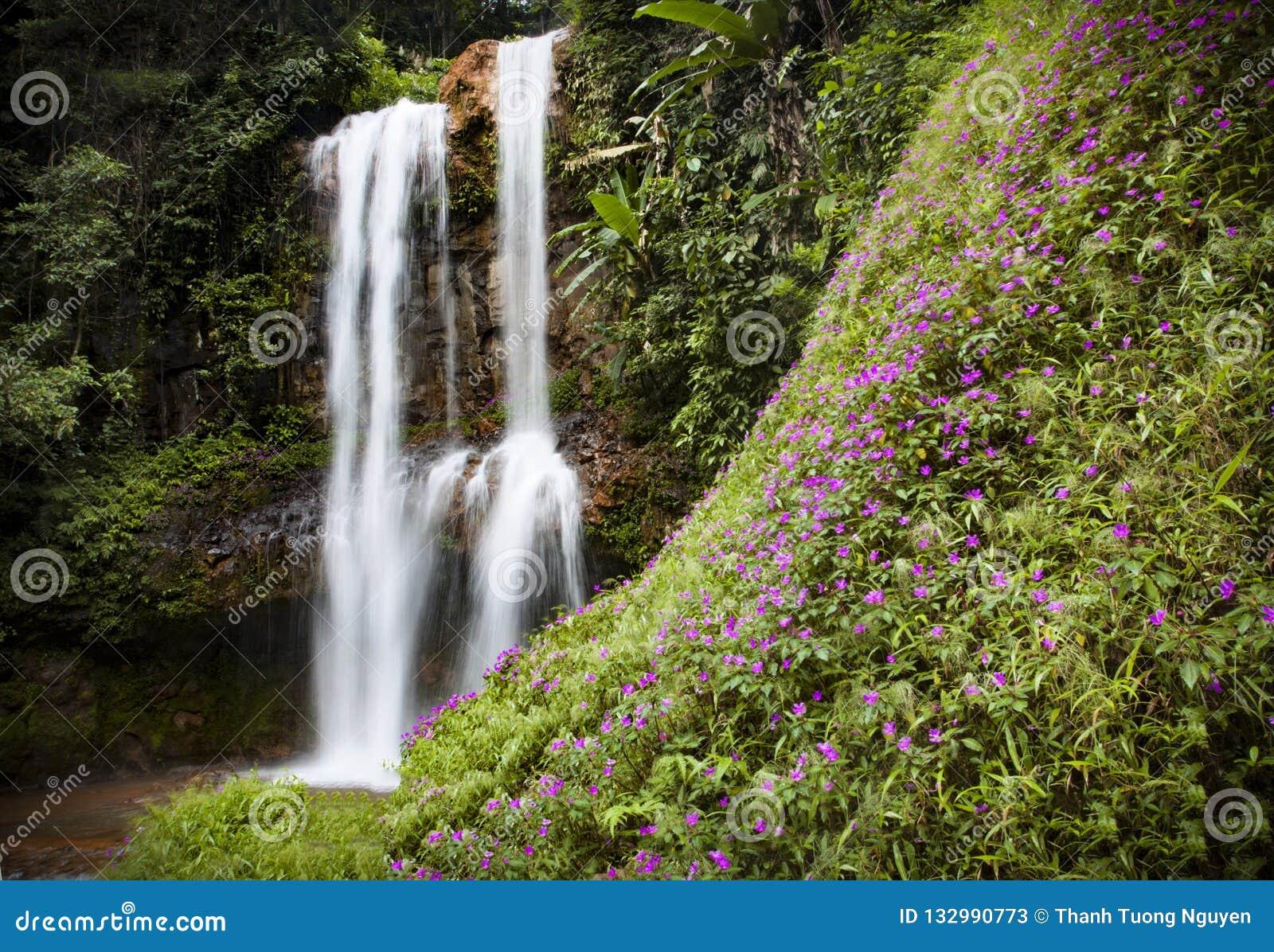 Sa Da镭瀑布在鲍地点,越南