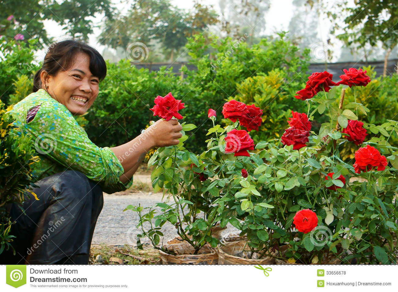 Happiness of asia farmer in springtime editorial stock photo image 33656678 - Flowers planted may complete garden ...
