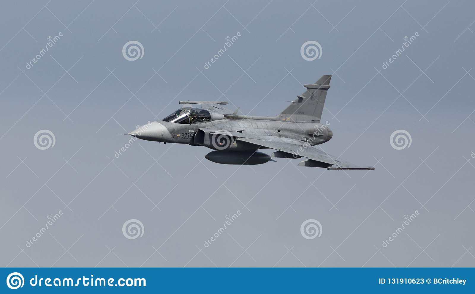 Saab Gripen-Kampfflugzeug