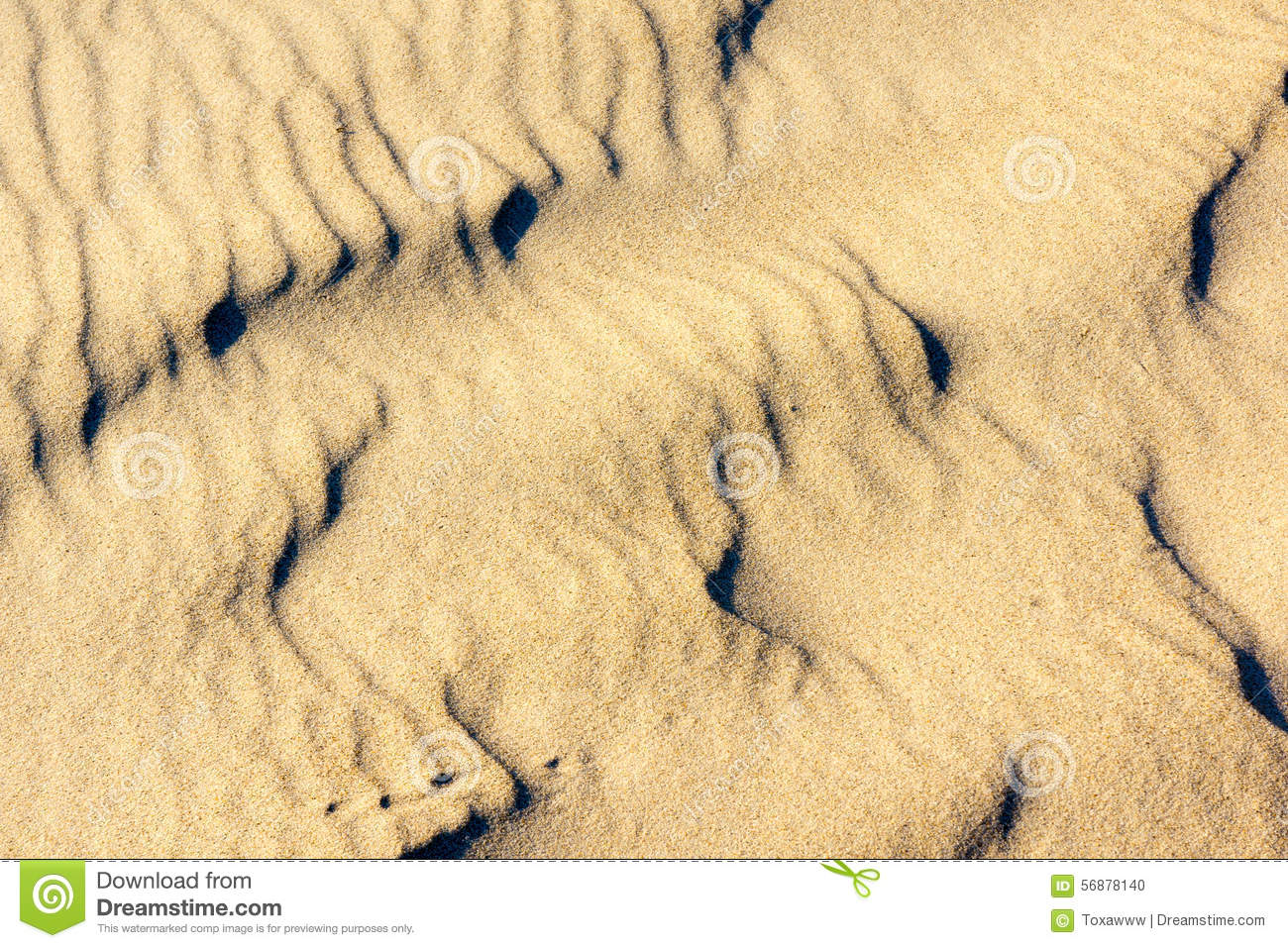 Sabbia sulle dune