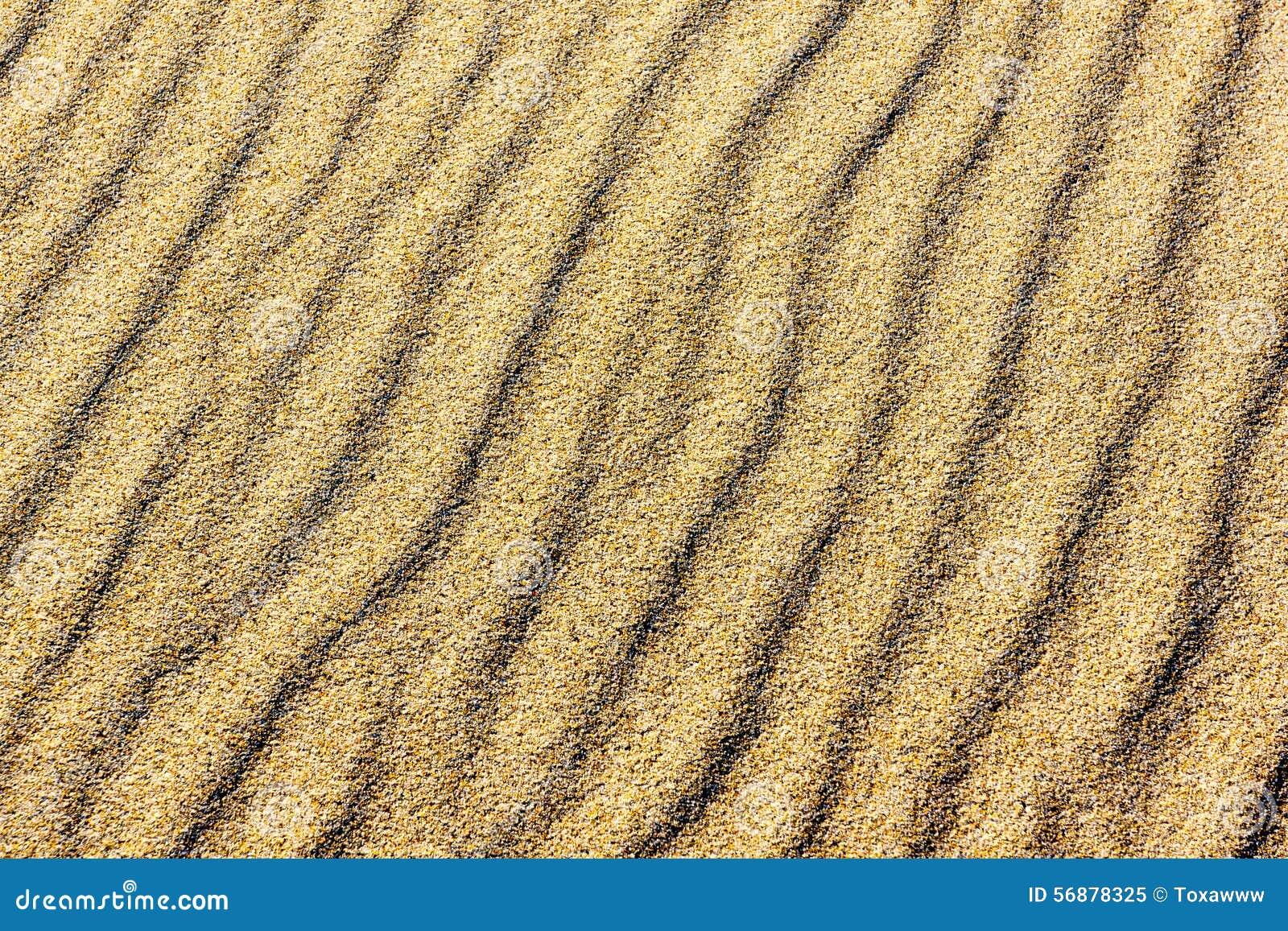 Sabbia sulle dune