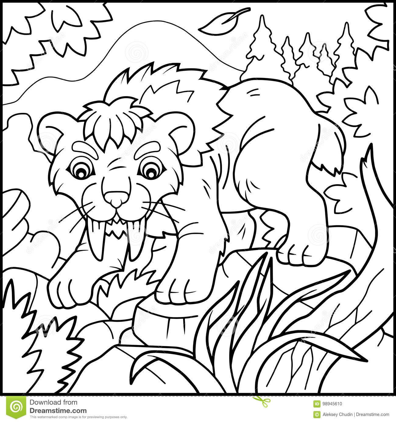 saber tooth tiger coloring book stock vector illustration of