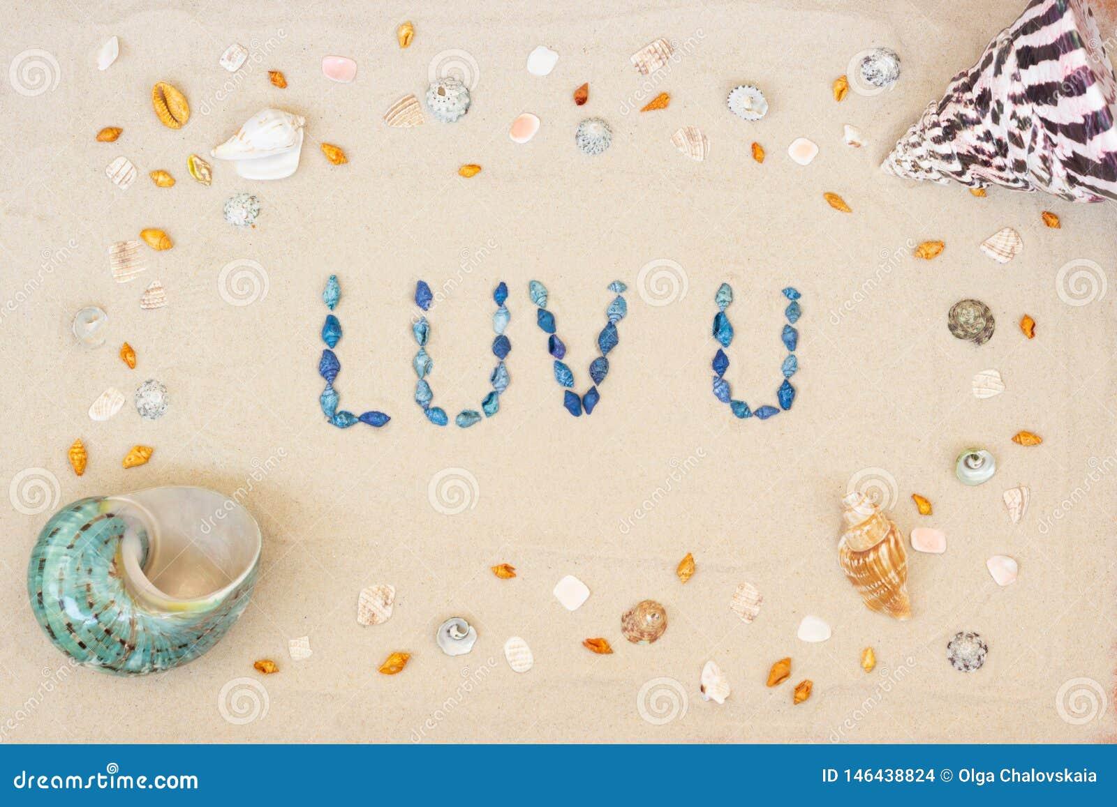 Sable sur la plage en été, l amour d inscription vous des coquilles sur le sable Configuration plate Vue sup?rieure