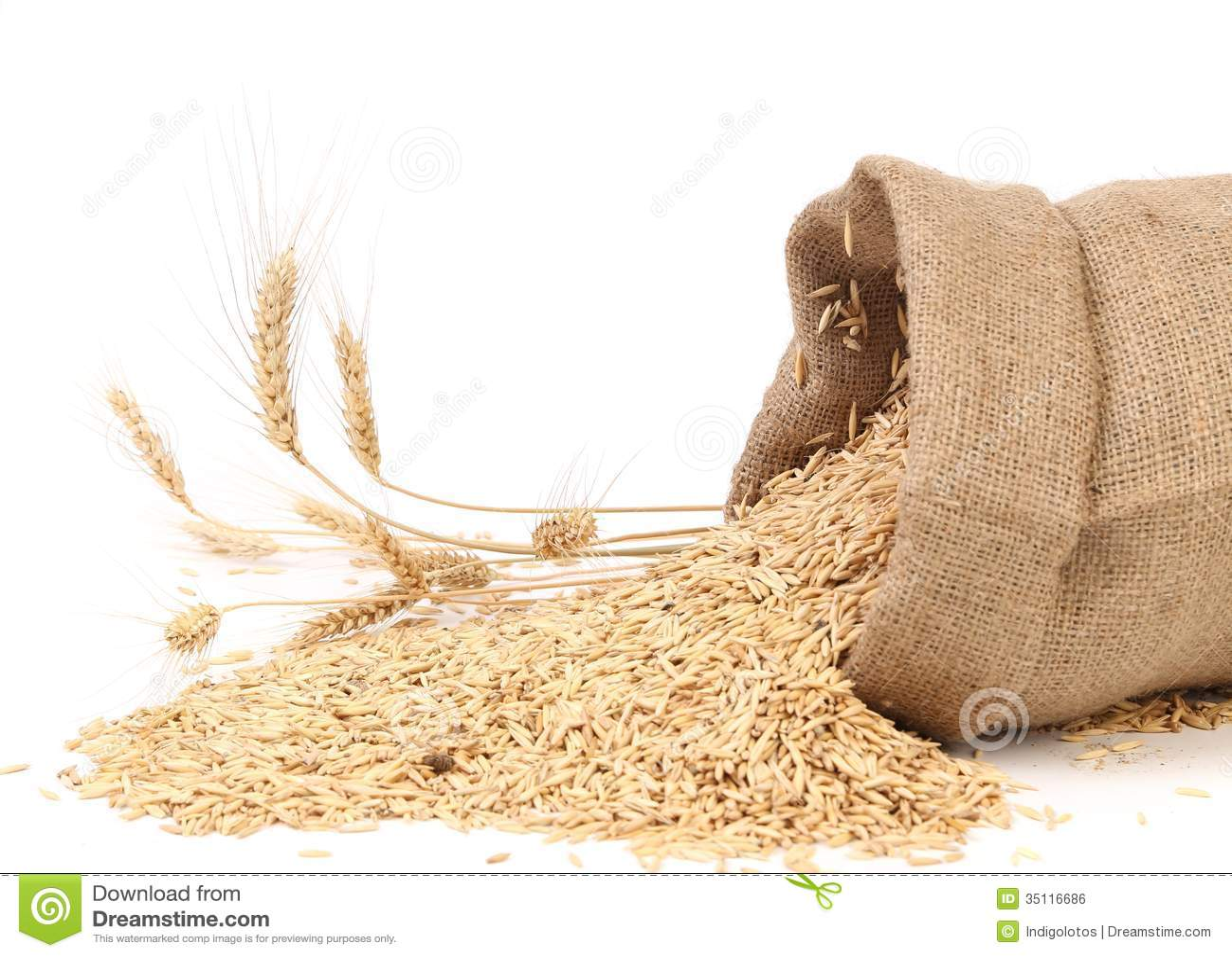 Sac avec des grains et oreille de bl photo stock image - Sac de cafe en grain ...