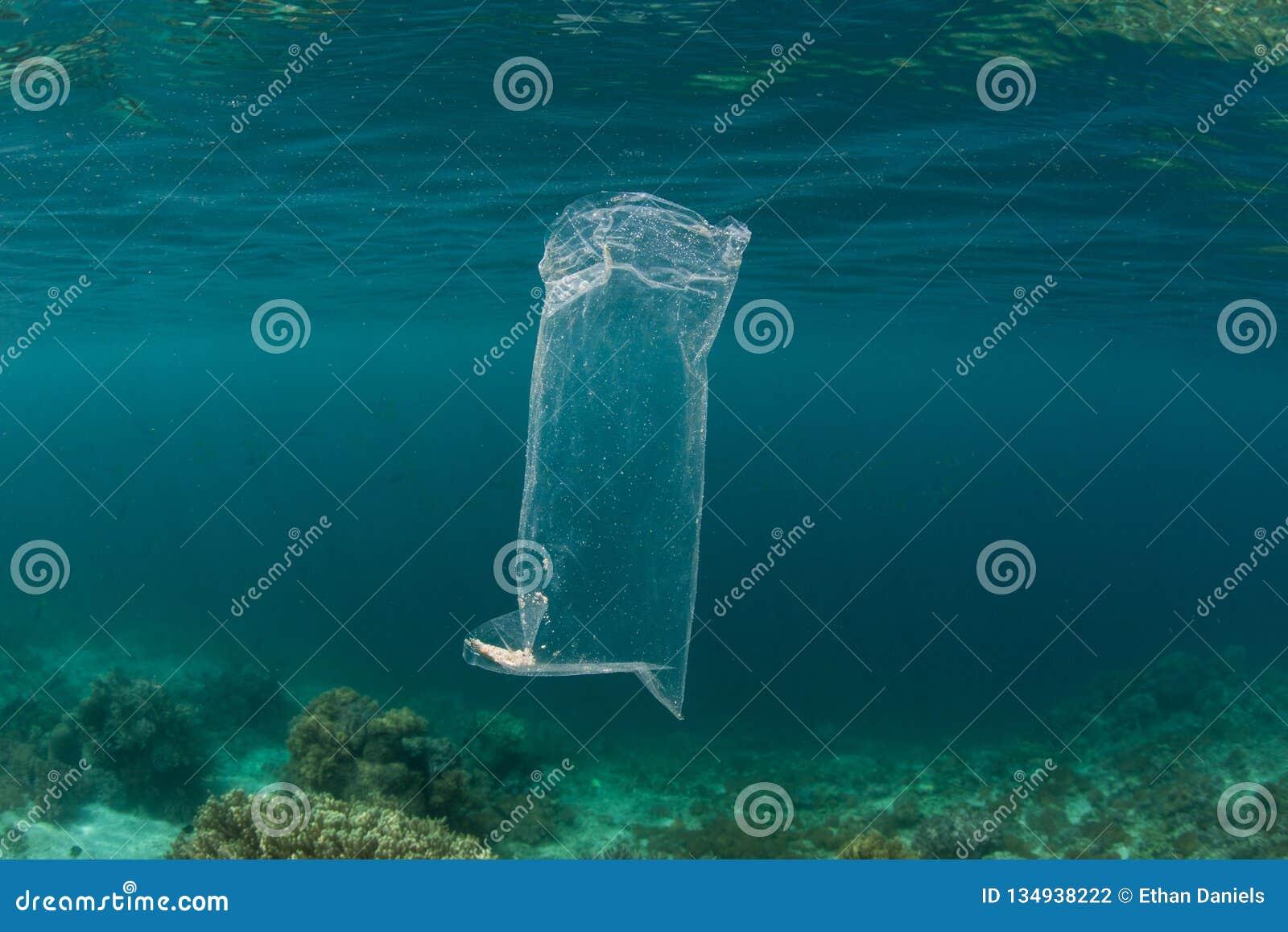 Sacchetto di plastica che va alla deriva nell oceano Pacifico tropicale