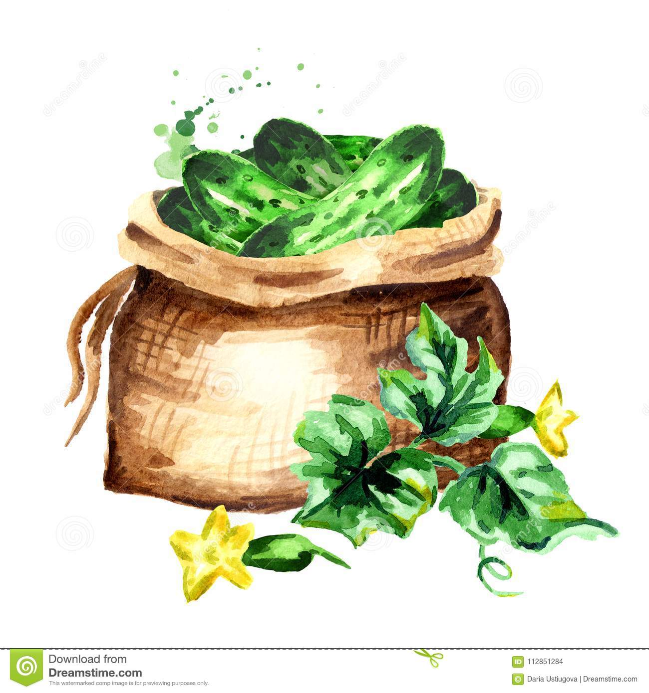 Sack with cucumbers. Watercolor hand drawn illustration, isolated on white background