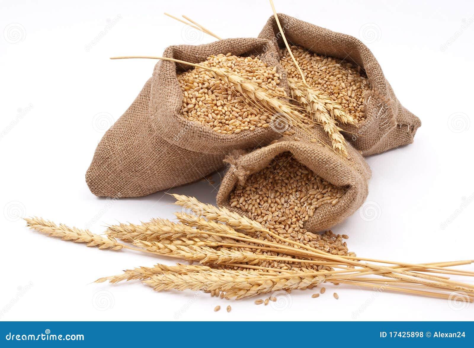 Sacks Of Wheat Grains Royalty Free Stock Photos - Image ...