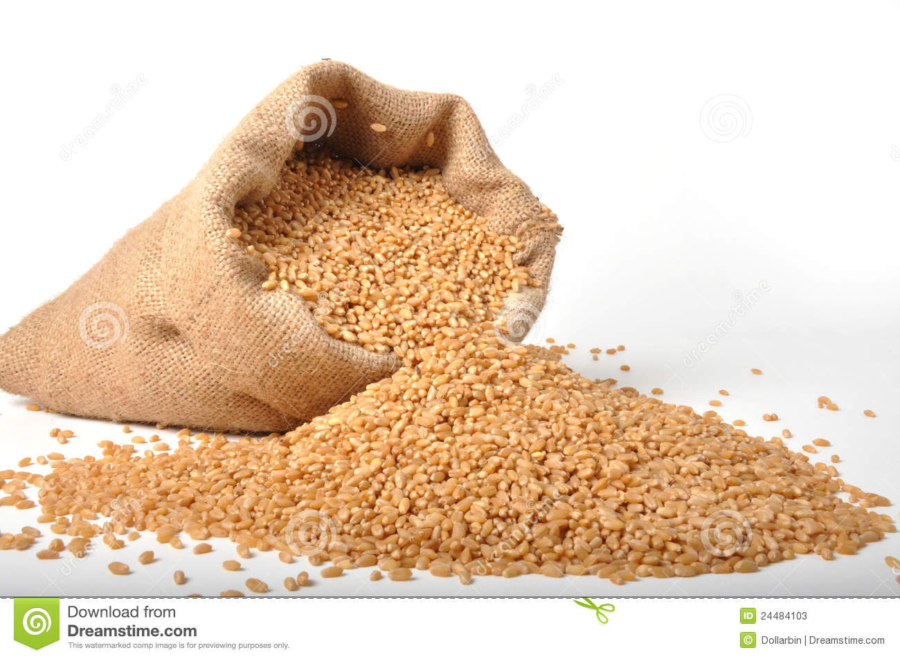Sacks of wheat grains stock image. Image of carbohydrates ...