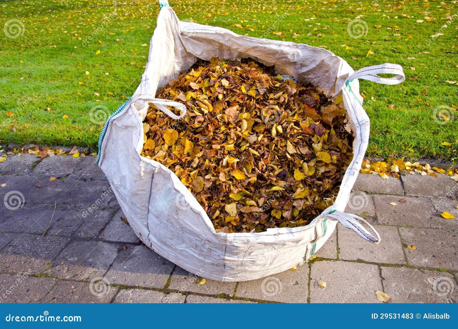 Saco com as folhas secas do outono no parque da cidade