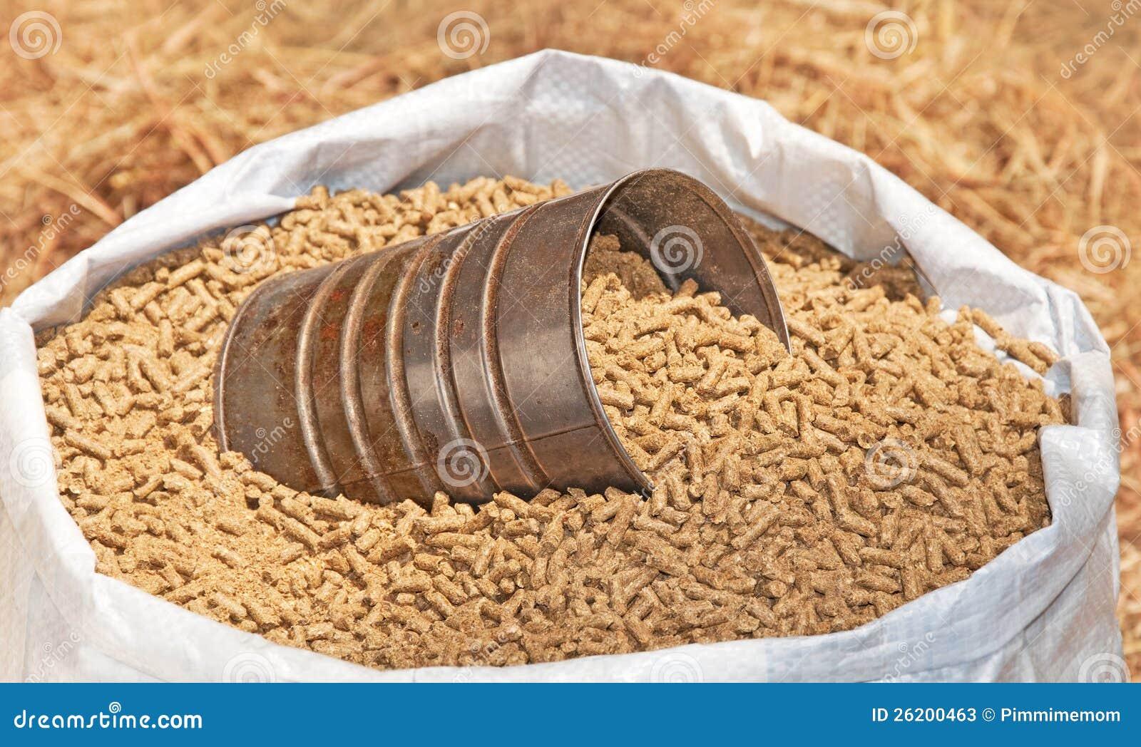 Saco da alimentação granulada do cavalo