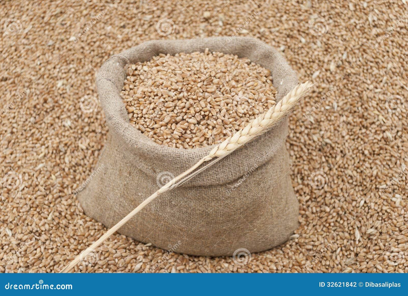 Saco do trigo.