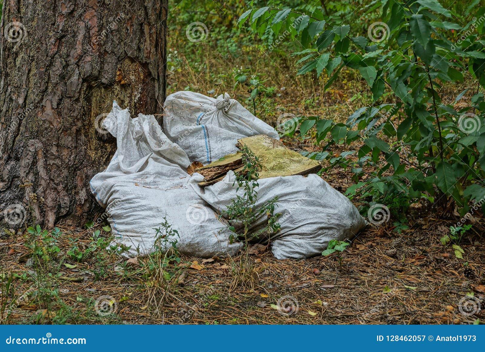 Sacos sujos brancos do lixo perto de uma árvore na grama na floresta