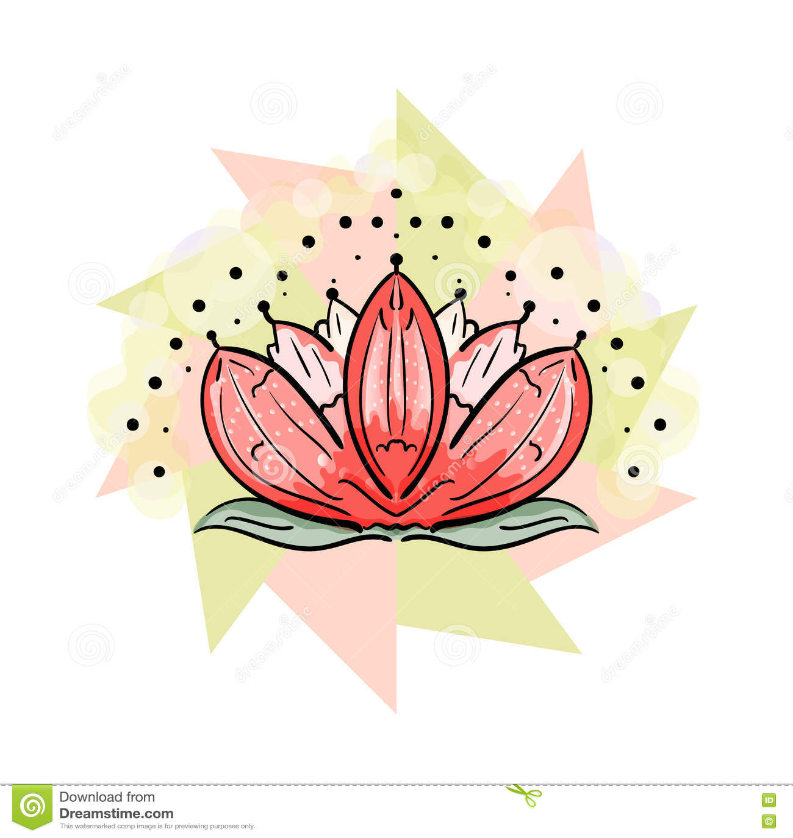 Sacred Lotus Vector Illustration Of The Flower Bloom Stock Vector