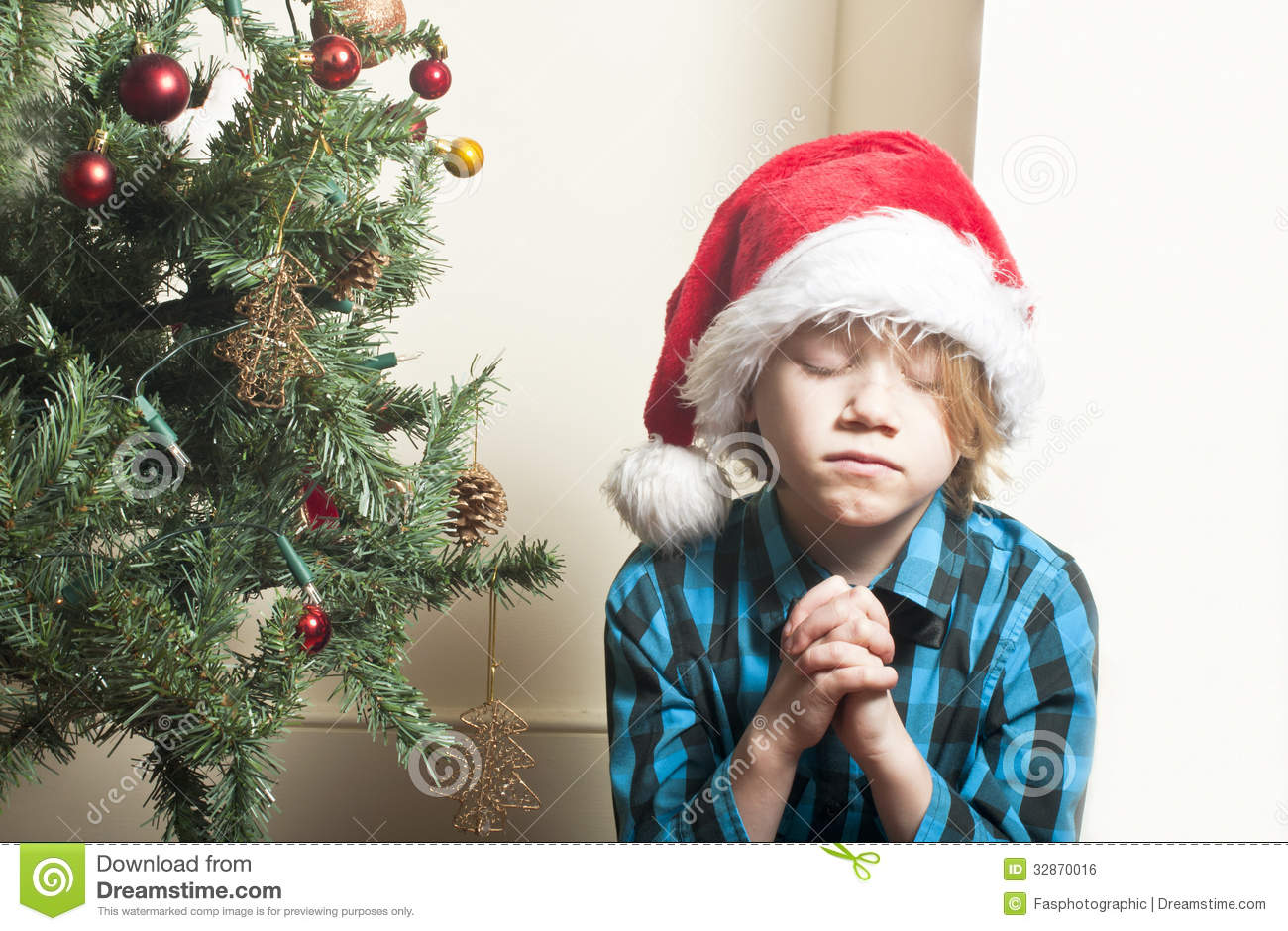 Sad Little Christmas Tree Stock Photos, Images, & Pictures - 202 ...
