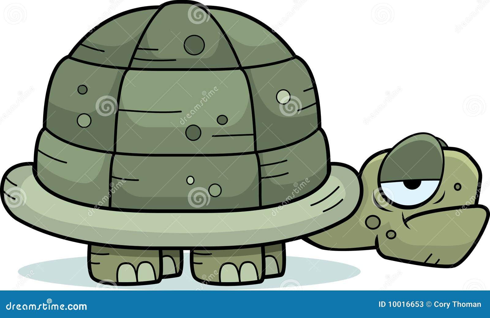 Turtle Clip Art - Turtle Clipart, HD Png Download , Transparent Png Image -  PNGitem