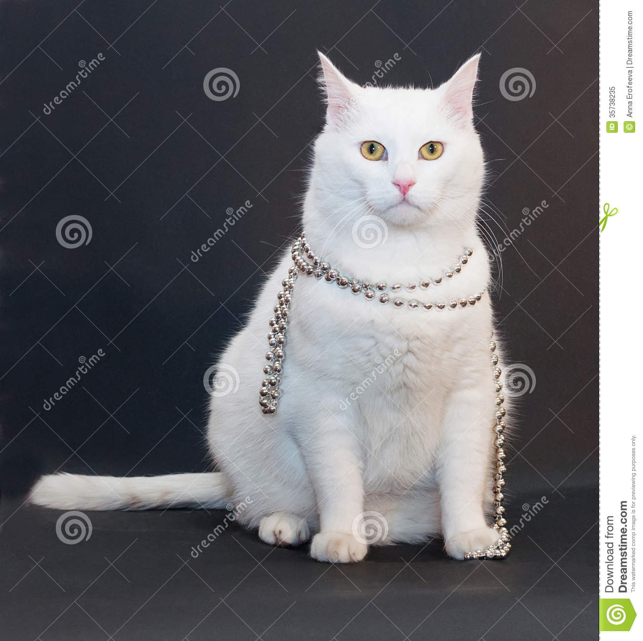 Sad White Cat With Yellow Eyes With Silver Christmas Beads