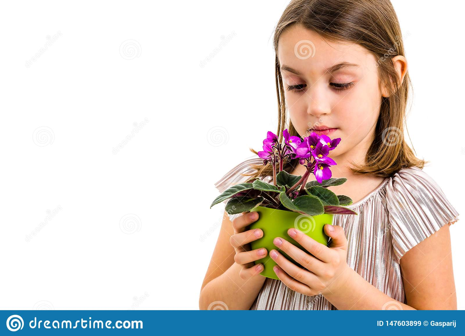 Little Girl Holding Flowers Stock Photo - Image of