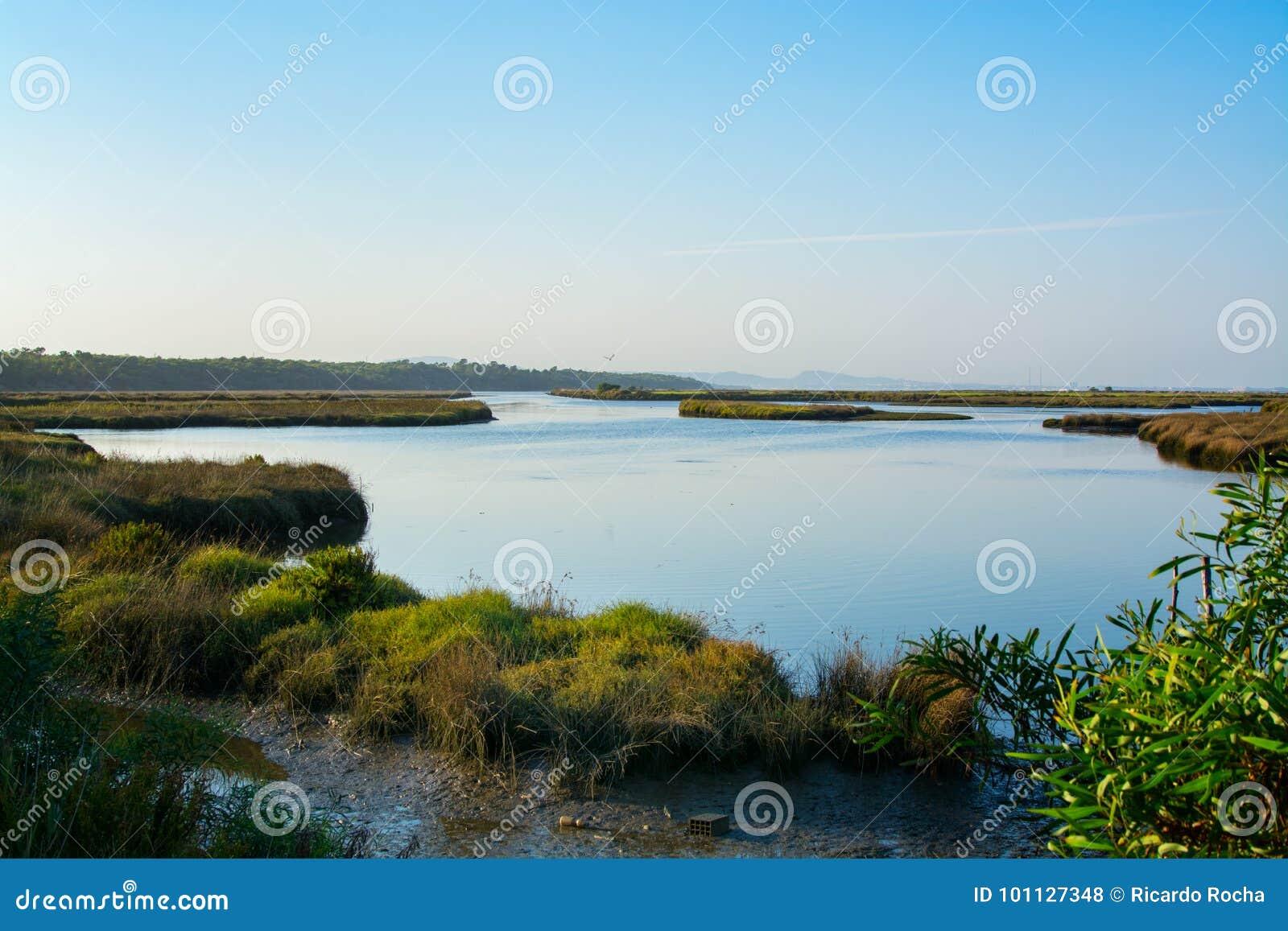 Sado de rivière dans Comporta, l Alentejo Portugal