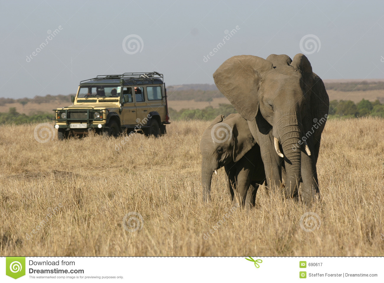 On Safari In Africa Royalty Free Stock Photography - Image: 690617