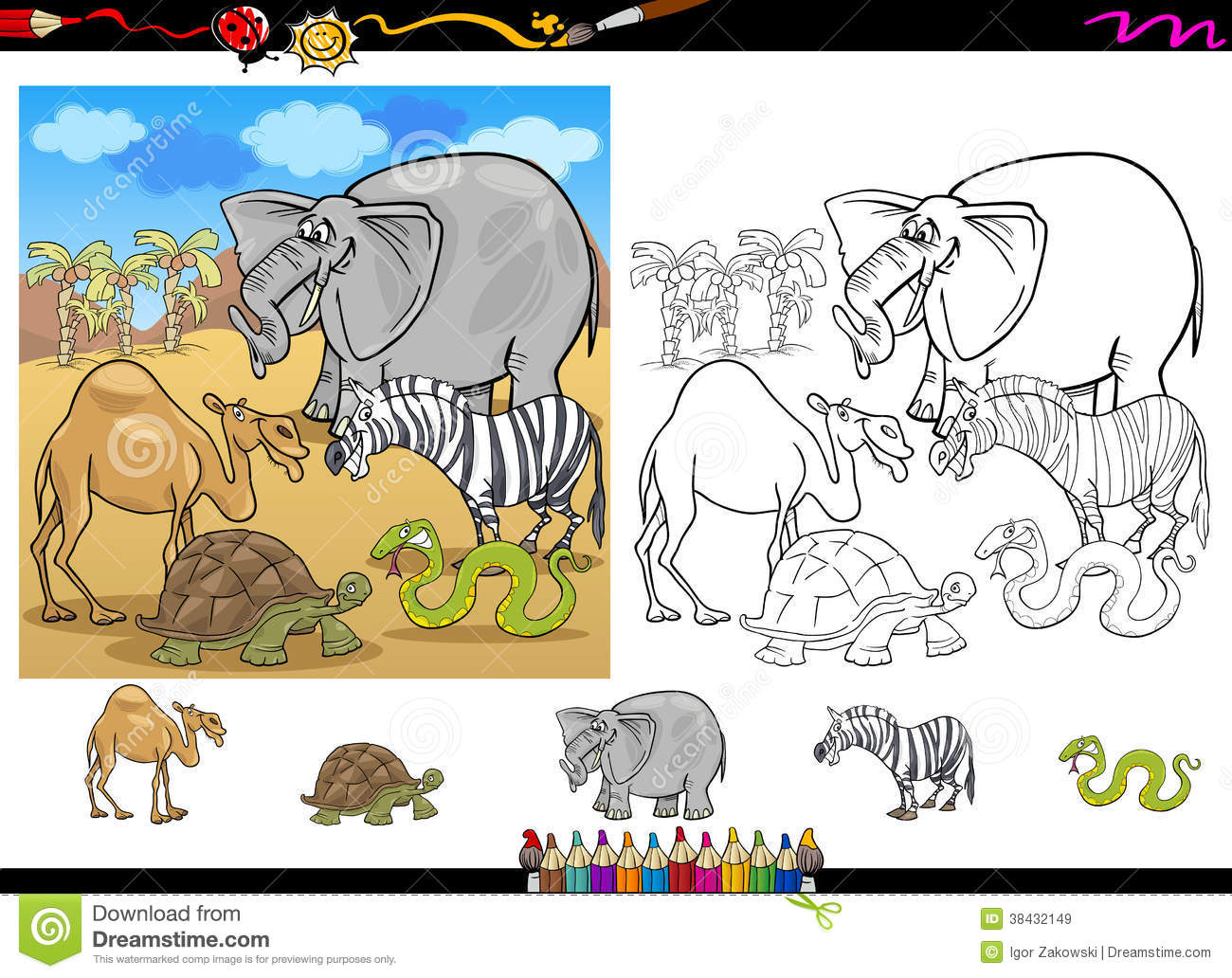 safari animals coloring page set royalty free stock images image