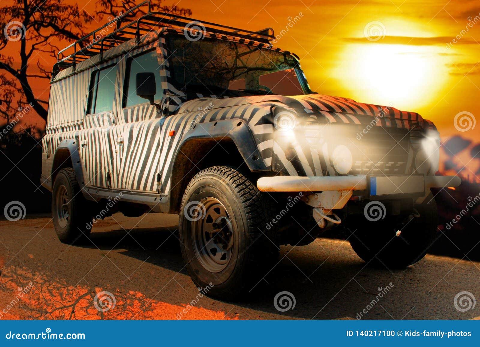 Safari dżip z zebra wzorem jedzie przez suchego gorącego savana natura Afryka