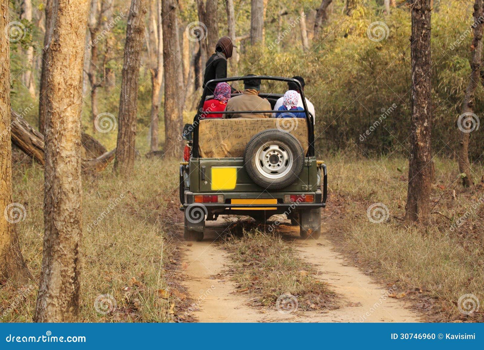 Safari dżip w głębokim lesie